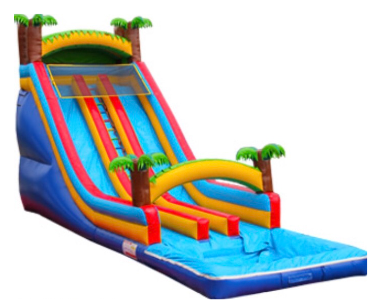 Tropical Double Lane Water Slide to rent in Houston